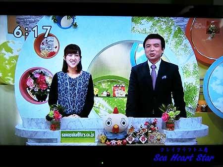國本さんと鎌田さん