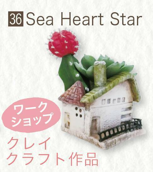 Sea Heart Star